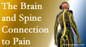 Aaron Chiropractic Clinic looks at the connection between the brain and spine in back pain patients to better help them find pain relief.