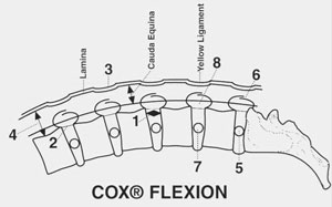 Effects of chiropractic Cox Technic