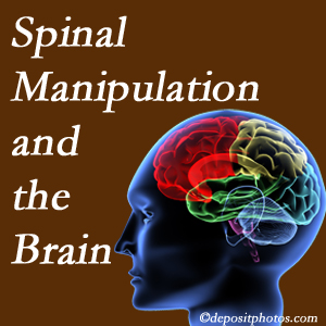 Aaron Chiropractic Clinic [shares research on the benefits of spinal manipulation for brain function.